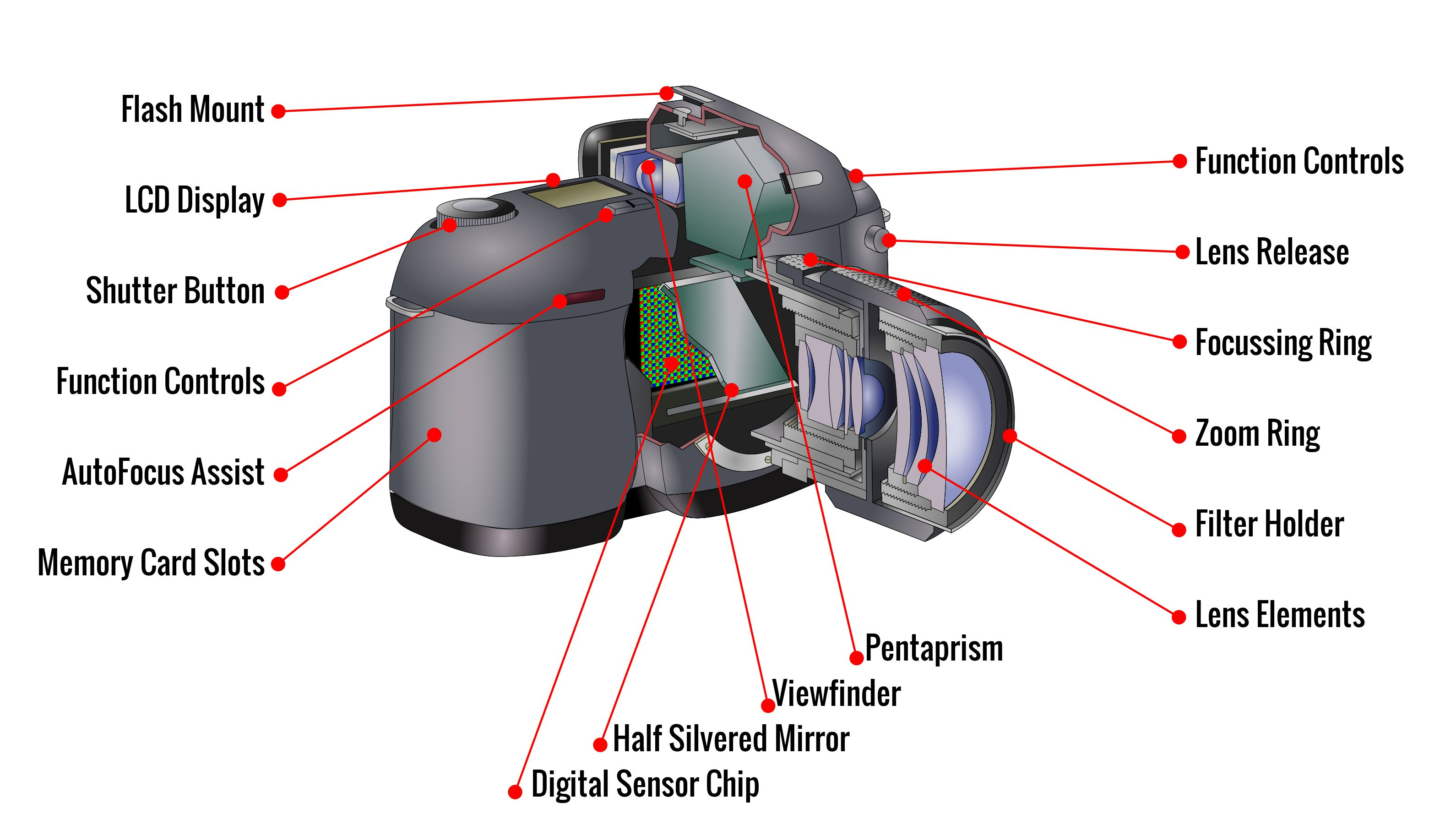 Camera Dslr Camera Types ulearn photography part of filmphotoacademy com here is a generic camera body and lens the main bulk holds all electronics batteries memory card digital sensor computer chip everythin